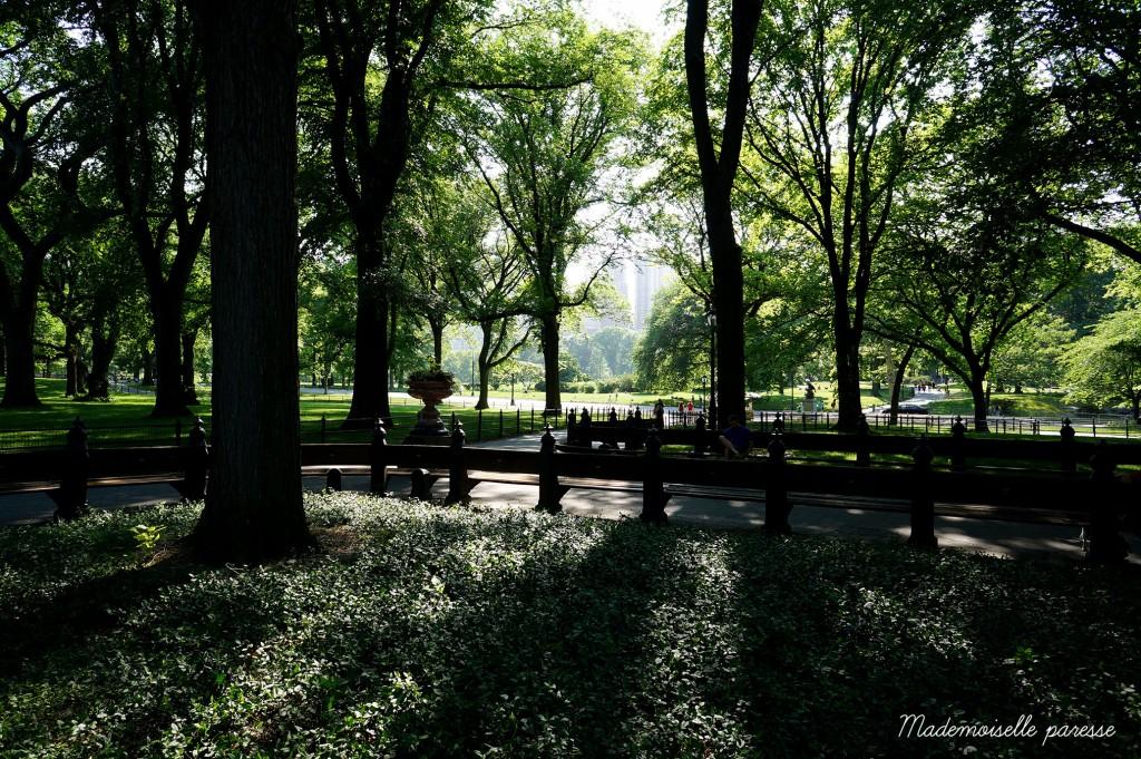 8 - Mademoiselle paresse - Central Park
