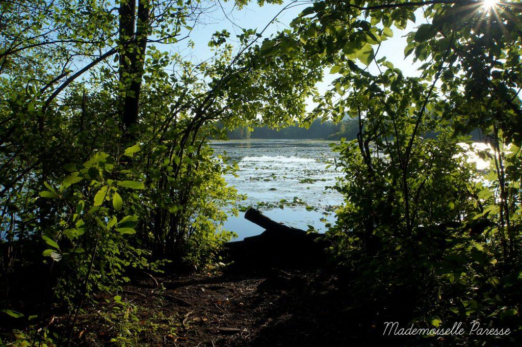 mademoiselle-paresse-ottawa-mud-lake