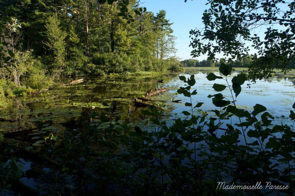mademoiselle-paresse-ottawa-mud-lake-2